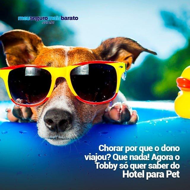 Seguro Viagem – hotel para PET